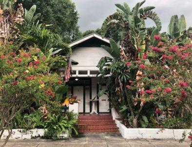 Ybor Villas Bougainvillea